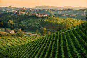 rtemagicc_landscape_monferrato_01.jpg_1