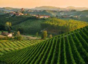 rtemagicc_landscape_monferrato_01.jpg_1_0_3